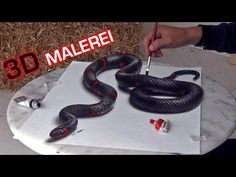 Malen mit 3D Effekt │ realistische Schlange │OPTISCHE TÄUSCHUNG - YouTube