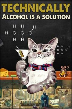 Funny Cats, Funny Animals, Cute Animals, Crazy Cat Lady, Crazy Cats, I Love Cats, Cool Cats, Cat Posters, Cat Quotes