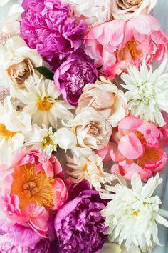 FLOWERS | color