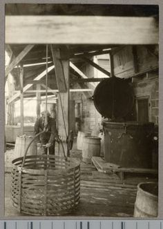 Crab steaming room at seafood processing plant, Crisfield :: Views of African American life in Maryland - Enoch Pratt Free Library