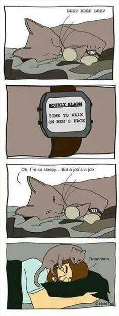A jobs a job