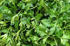 Tisztítsd ki a veséd petrezselyem zölddel! Natural Cures, Parsley, The Cure, Essential Oils, Herbs, Health, Garden, Nature, Life