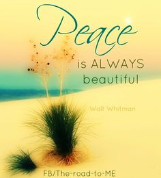 Peace quote via The Road to Me on www.Facebook.com