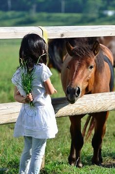 Put a little girl with a horse, and she will never be the same.