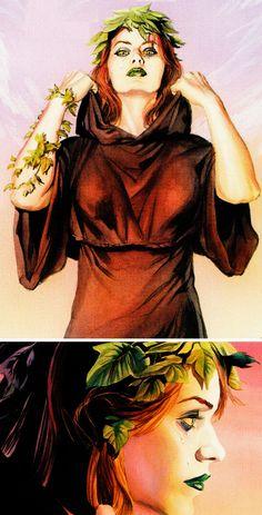 Comic Books Art, Comic Art, Book Art, Gotham Characters, Poison Ivy Dc Comics, Gotham Girls, Batman, Arkham Asylum, Alex Ross