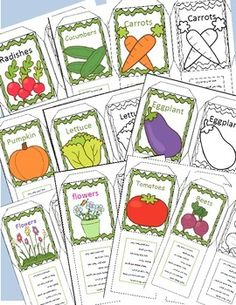 Plant Seed Packets Craft....Let's Learn S'more!