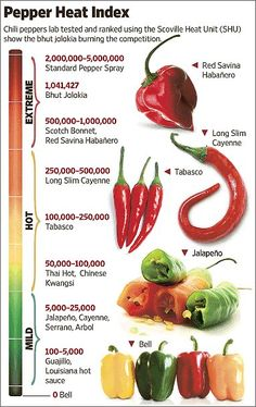 It's 200 times hotter than the jalapeño. And spicy-food lovers can't wait to get their hands on it. It's the bhut jolokia chili pepper from India, and it's recently been declared the hottest in the world. Chile Picante, Herbalife Shake Recipes, Coconut Oil Weight Loss, Healthy Snacks, Healthy Recipes, Healthy Habits, Eating For Weightloss, Ghost Peppers, Stuffed Hot Peppers