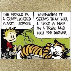 Calvin and Hobbes, Take a nap in a tree and wait for dinner. words to live by. :) by karla Calvin And Hobbes Comics, Calvin And Hobbes Quotes, The Words, Comics Illustration, Illustrations, I Take A Nap, Fraggle Rock, Fun Comics, That Way