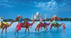 Golden Triangle India Tour Packages | Book Golden Triangle Tour Packages | Golden Triangle Travel Packages | Golden Triangle India Tours