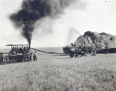 Steam engine thrashing wheat in 1915 on Fred Crouse farm,This is George Stimpson's steam engine which was the first on the East Bench. Steam engine drives belt connected to separator. These are two bundle racks with one on each side of the separator and two men pitching bundles into separator. This Fred Crouse farm in 1915.