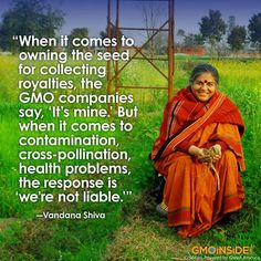 Please share this quote and awareness about GMOs!! https://www.facebook.com/GmoInside