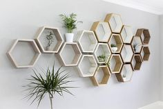 White Hexagon Wall Shelf in Solid Oak Limed Oak Set of
