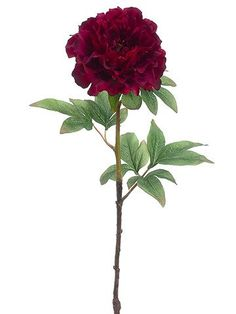 "Peony Faux Flower Stem in Marsala Wine<br>5.5"" Bloom x 21"" Tall"