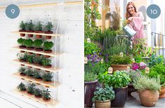 Eye Candy: 10 Gorgeous Container Gardens
