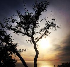 Sunset in Big Sur, California.