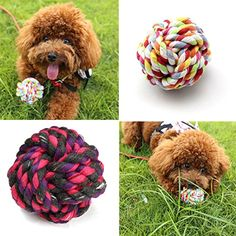 5Pcs Multicolor 55cm Pet Rope Ball Twine Ball Pet Clean Teeth Braided Knot Dog Toy Balls -- Find out more about the great product at the image link.(This is an Amazon affiliate link and I receive a commission for the sales)