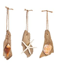 Look at this #zulilyfind! Driftwood Shell Ornament Set #zulilyfinds