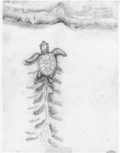 Indian lore says turtle is mother earth. I belive Indian lore says turtle is mother earth. I belive Sea Turtle Art, Baby Sea Turtles, Cute Turtles, Turtle Baby, Sea Turtle Painting, Tiny Turtle, Body Art Tattoos, Small Tattoos, Turtle Tattoo Designs