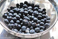 Homemade Blueberry Syrup Recipe