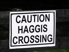 Haggis Crossing