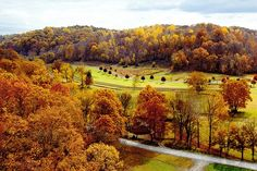 Beautiful Fall countryside viewed from the Natchez Trace Bridge, near Franklin, Tennessee