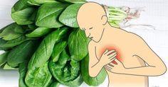 17 potravin s vysokým obsahem hořčíku. Snižují riziko úzkosti, deprese, srdečního infarktu a jiných nemocí