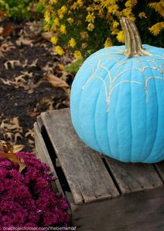 The Teal Pumpkin Project: Allergy Safe and Real Food Approved!