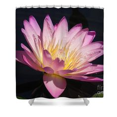 "Blooming With Beauty Shower Curtain by Chrisann Ellis.  This shower curtain is made from 100% polyester fabric and includes 12 holes at the top of the curtain for simple hanging.  The total dimensions of the shower curtain are 71"" wide x 74"" tall."
