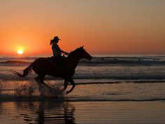 EVERY girl dreams of riding on a beach. I got to do it once in Mexico but didn't get the sunset, darn it! Cowboys And Angels, Sunset Silhouette, Horse Love, Horseback Riding, Beautiful Horses, Country Girls, Great Photos, Equestrian, Westerns