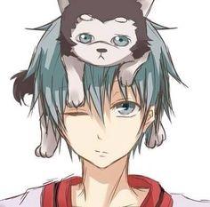 Kuroko's Basketball || anime boy