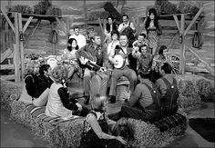 TV shows - Hee Haw