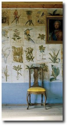 Botanical Illustrations (reproductions from the on the wallpaper at the Carolus Linnaeus (the man who created the latin binomial nomenclature to identify organisms) Swedish estate. Photo by Ingalill Snitt Botanical Itustrator. Botanical Wallpaper, Of Wallpaper, Botanical Prints, Botanical Drawings, Swedish Wallpaper, Interior Inspiration, Design Inspiration, Impressions Botaniques, Illustration Botanique