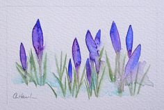 CROCUSES IN SNOW (sale price - was £30)  An Original Small Watercolour Painting by Amanda Hawkins  Size of painted area: 14 x 9cm approx Not framed or mounted  About The Artist  Amanda Hawkins has been painting in watercolours for most of her life, and graduated in Art, Design and Illustration at Southampton Institute. Amanda has worked on numerous commissions both private and commercial, designing greeting cards and illustrating wildlife books. She has held many successful exhibitions of…