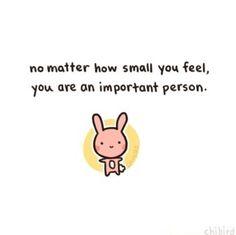 Motivational bunny