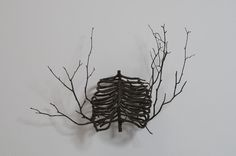 Image result for wooden rib cage