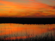 Quivira Wildlife Refuge, Kansas