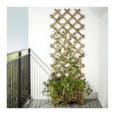 Backyard Ideas Discover ASKHOLMEN Flower box with trellis outdoor gray-brown stained - IKEA Outdoor Plants, Outdoor Decor, Ikea Outdoor, Plants Indoor, Air Plants, Small Balcony Garden, Balcony Flowers, Balcony Plants, Porch Plants