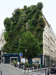 Image uploaded by StarQuenched. Find images and videos about paris, france and vertical garden on We Heart It - the app to get lost in what you love. The Saturdays, Alfred Stieglitz, Chelsea Fc, Architectural Elements, Find Image, Madrid, Public, Street View, Building