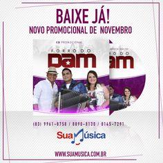 Forró do Dam- Promocional de Novembro - Nova Frente   http://www.suamusica.com.br/?cd=493652