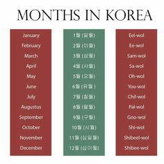 Months in Korean Language- Learn Basic Korean, How To Speak Korean, Korean Phrases, Korean Quotes, Korean Slang, Korean Words Learning, Korean Language Learning, South Korean Language, Months In Korean
