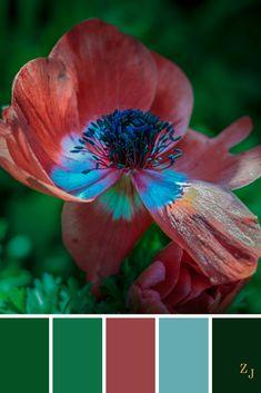ZJ Colour Palette 484 #colourpalette #colourinspiration