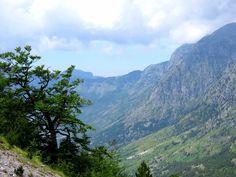 Qafthore Shkoder Albania