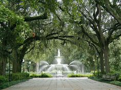 Forsyth Park in Savannah, Georgia. Where James and I spent our Honeymoon. This city is so wonderful...urban but also southern. Street musicians next to Paula Deen's famous flapjacks. The perfect combo.