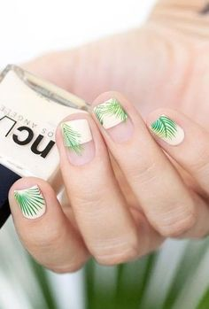Square + Green and White + Palm