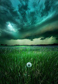 """Resolute"" Horizons by Phil Koch. Milwaukee, Wisconsin"
