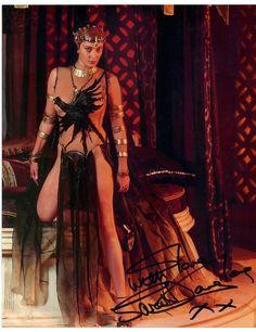 Queen Taramis Queen Taramis C...