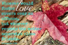 """~Encouragement for Today Devotions by Proverbs 31 Ministries~ """"Whoever would foster love covers over an offense, but whoever repeats the matter separates close friends."""" Proverbs 17:9"""