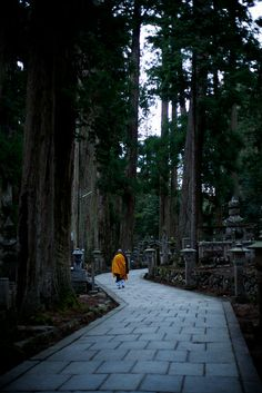 Monk walking in Okuno-in cemetery -  Koya San, Japan