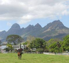 Avontuur Estate with Helderberg Mountain - between Stellenbosch and Somerset West, South Africa