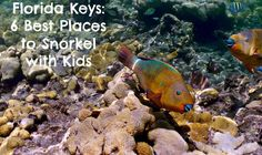 I'm a big fan of the Florida Keys. Two years ago, my older girls and I stayed at Hawks Cay Resort on Duck Key. We also spent time exploring Key West. While we had a few hours to splash around at Bahia Honda State Park on Big Pine Key, we unfortunately did not have any time for snorkeling. I'm hoping…